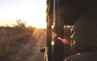 The safety of open safari vehicles (OSVs) has come under scrutiny and new regulations have been introduced.  © Stefan de Villiers