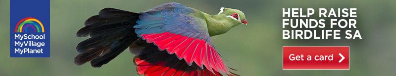 BIRDLIFESA_MyPlanet_800x155_get_a_card