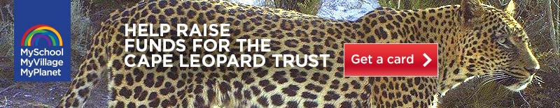 Cape-Leopard-Trust-MyPlanet