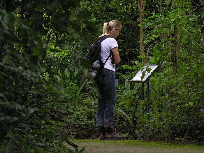 botanical-garden-Lowveld