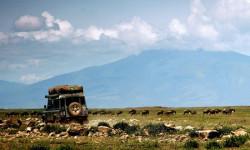 drive-through-serengeti