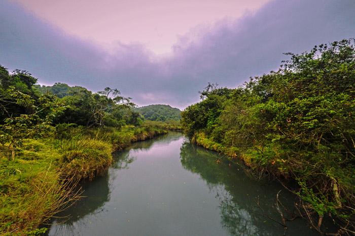 dwesa-nature-reserve-transkei