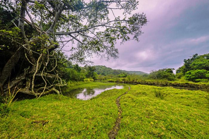 dwesa-nature-reserve