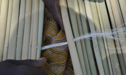 making-mats-from-papyrus-reeds