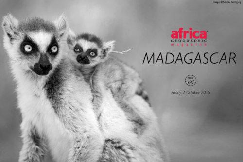 Madagascar-cover-2
