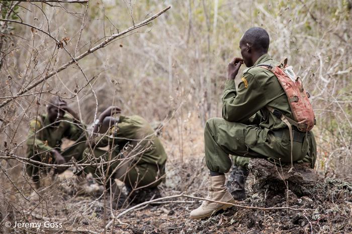 anti-poaching-rangers