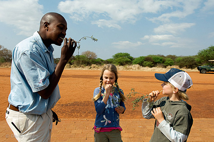 children-learning-bush-skills