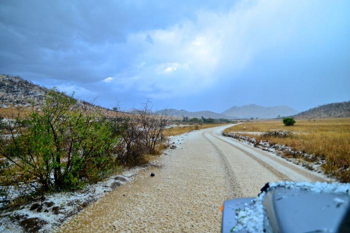 hail-storm-in-the-bush