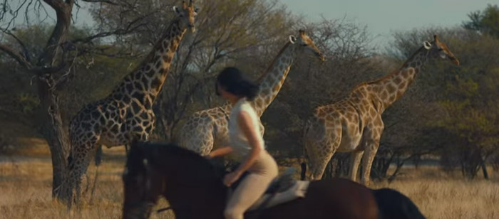 taylor-swif-riding-past-giraffe-wildest-dreams