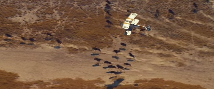 tiger-moth-aircraft-botswana-taylor-swift-music-video