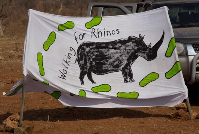 walkign-for-rhinos-madikwe