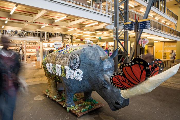 wpps-rhino-art-watershed-market