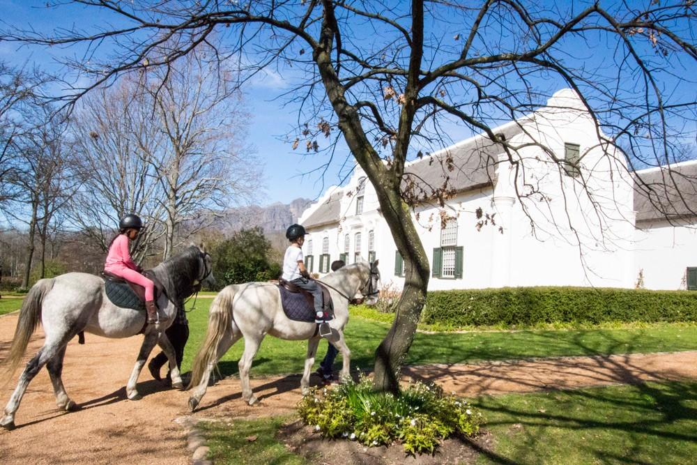 Boschendal-horse-rides-Tracey-Van-Wijk