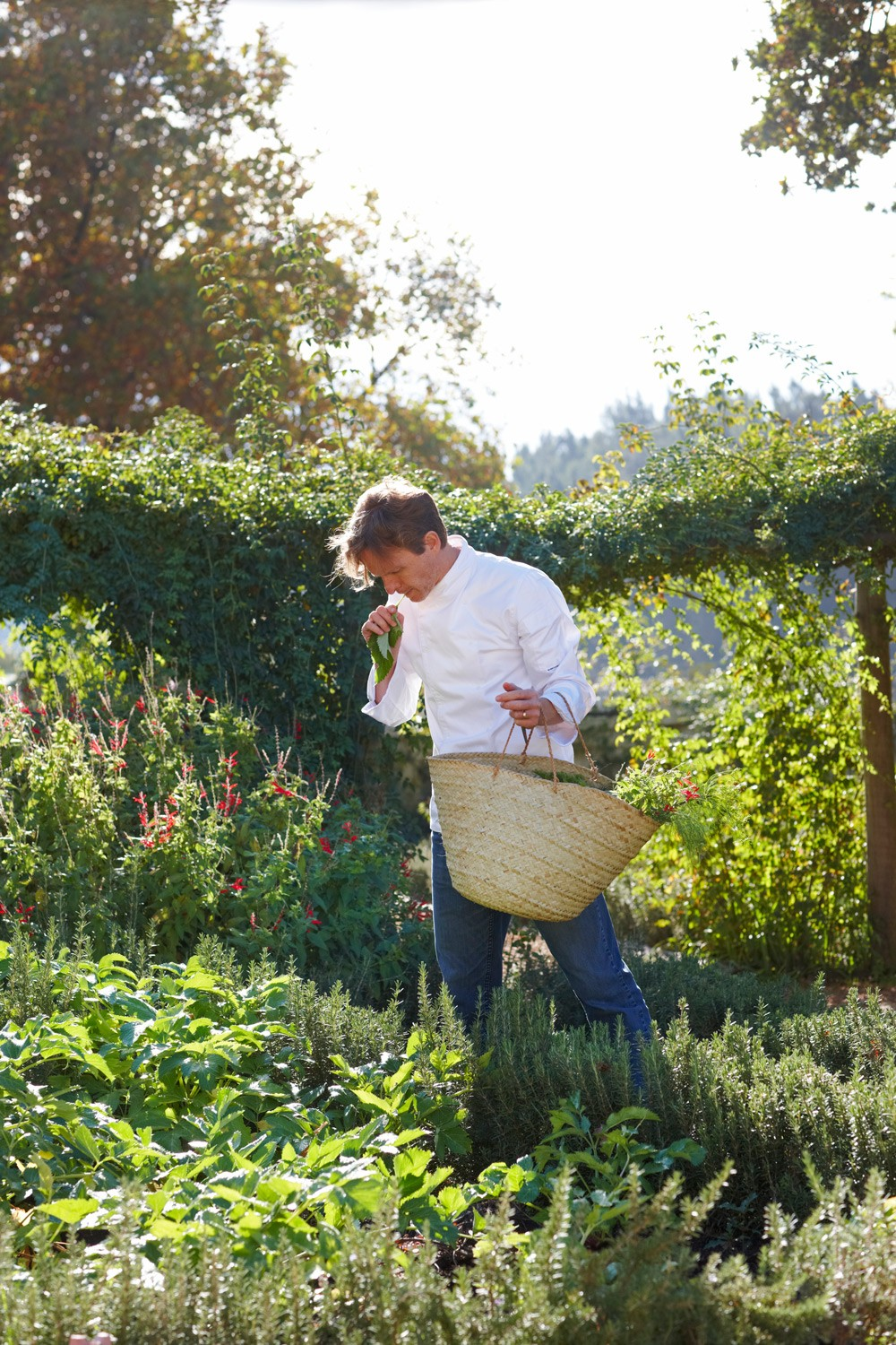 choosing-fresh-ingredients-from-the-garden-christiaan-campbell
