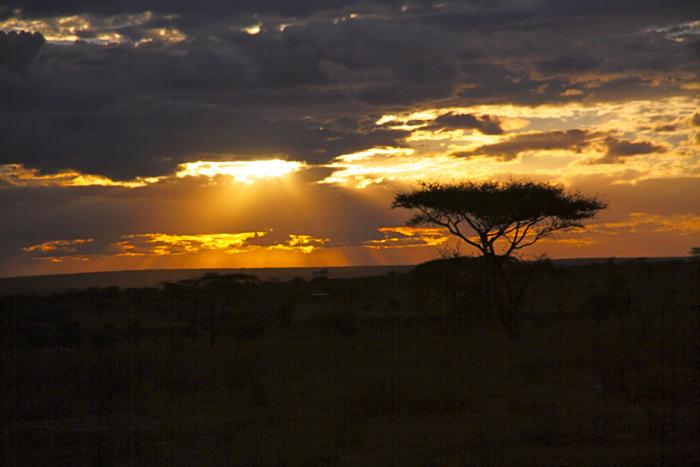 dusk-over-amboseli