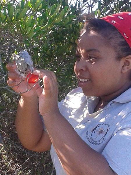 Siphosethu Moshani observing a leaf-dwelling spider