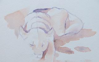 lioness-sketch