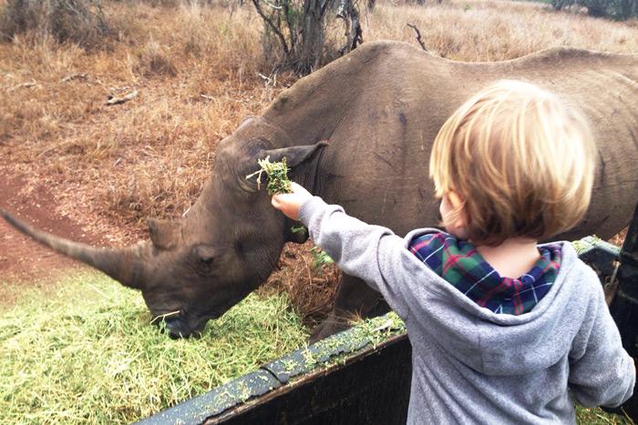 lucky-rhino