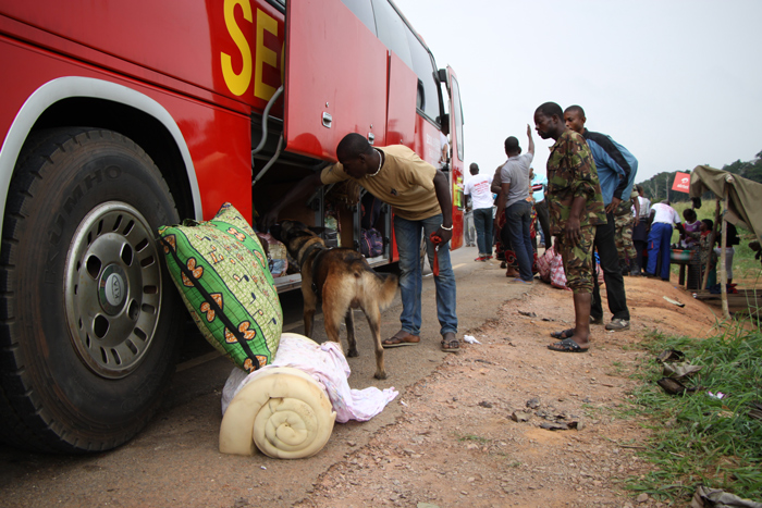 Busses loaded with luggage and passengers are searched. This requires encouraging all the passengers to exit the vehicle and wait beyond the barrier while the dogs search the interior of the bus.