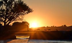sunset-in-botswana