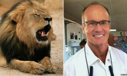 Walter Palmer faced a huge backlash online over his killing of Cecil the lion