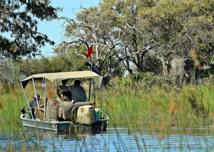Affordable Walking Safari In Botswana S Okavango Delta