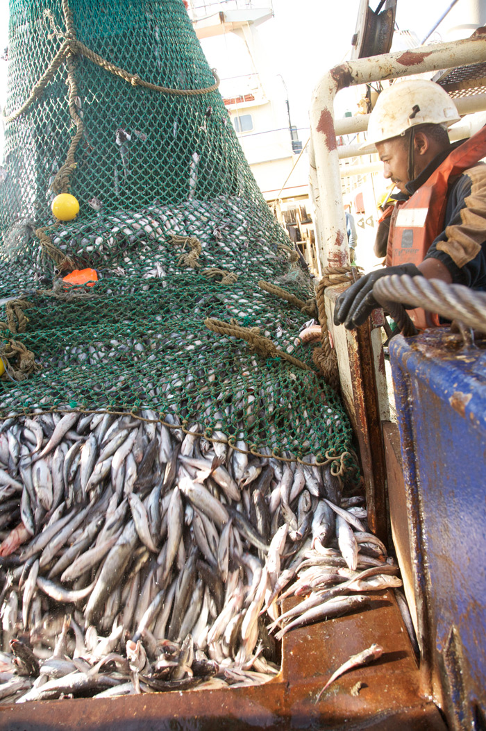 A hake fishing trawler © Sea Harvest