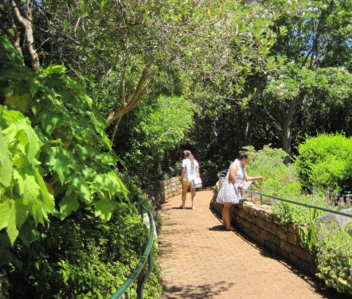 Visitors enjoying the Kirstenbosch fragrance garden © Catherine Browne