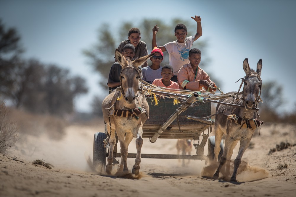 Passing more donkey carts than cars while manoeuvring along some wild stretches on the way to Sossusvlei
