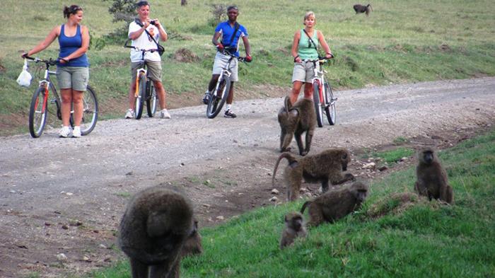 family-cycling-trip-kenya