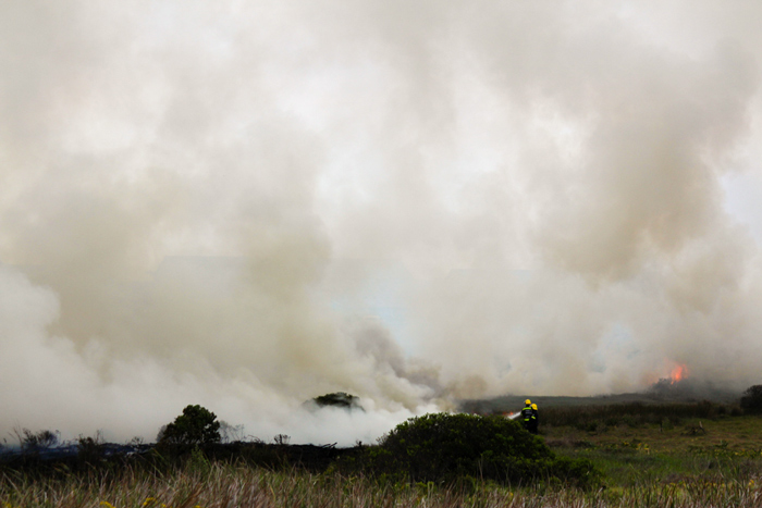 firefighters-rietvlei-nature-reserve
