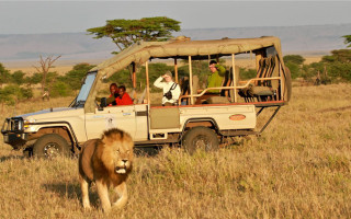 game-drive-in-conservancy-kenya