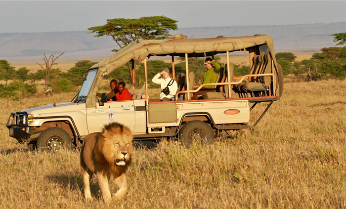 Tours And Travel Jobs In Kenya