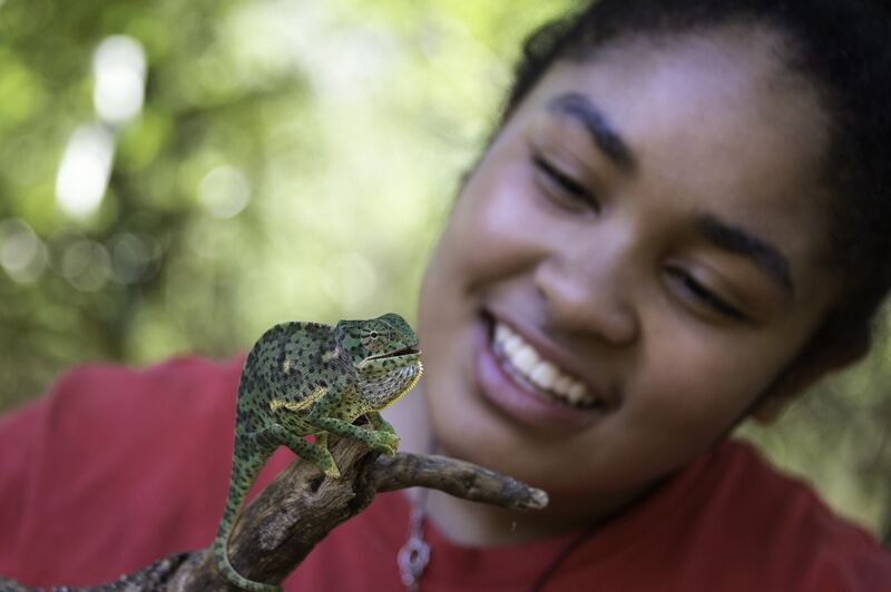 lapalala-wilderness-school-limpopo