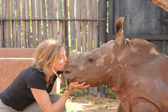 rhino-love