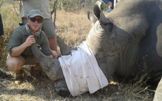 rhinos-without-borders