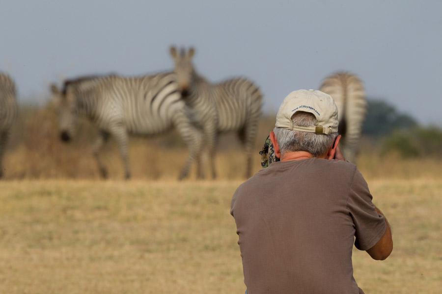 Photographing-Zebras-south-Luangwa