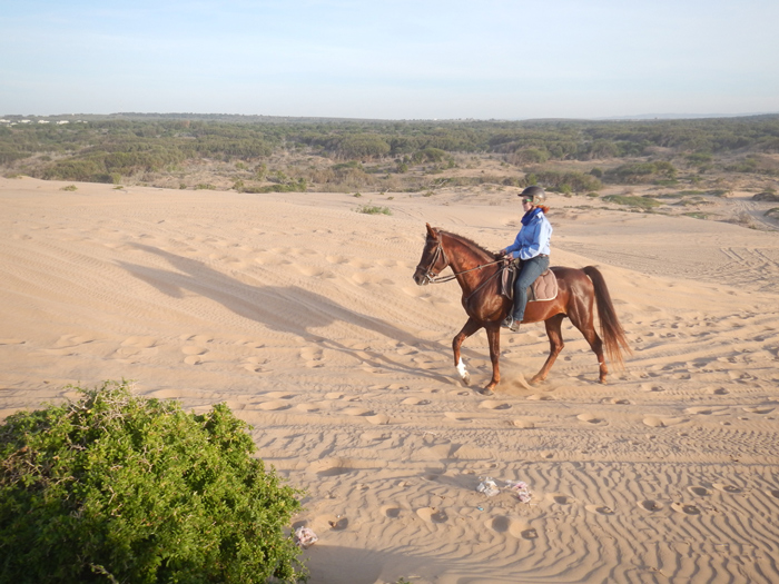 barque-picton-castle-morocco-horse-riding-in-sand-dunes