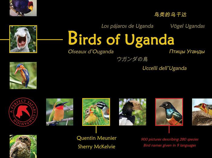 birds-of-uganda-quentin-meunier-sherry-mckelvie