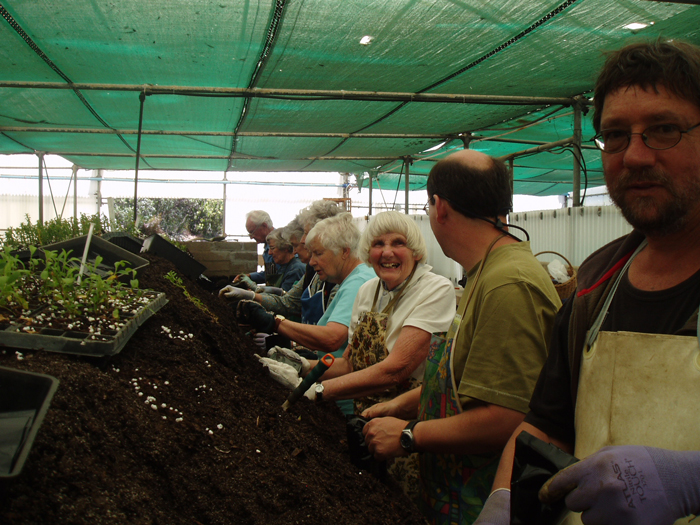 Volunteers help out in the gardens © The Botanical Society of South Africa Kirstenbosch branch