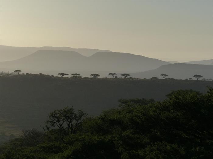 landscape-at-three-trees