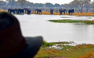 lelobu-safaris-botswana