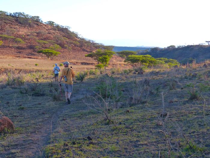 walking-at-three-trees