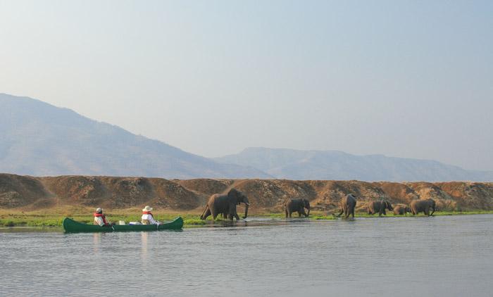 Canoeing-with-elephants