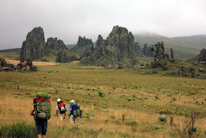 climbing-aberdare-mountains-kenya