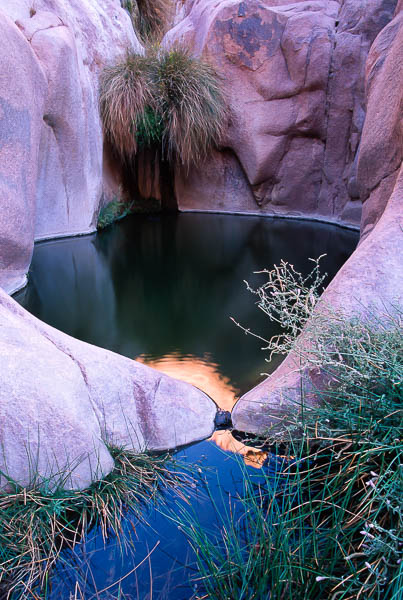 sanai-oasis