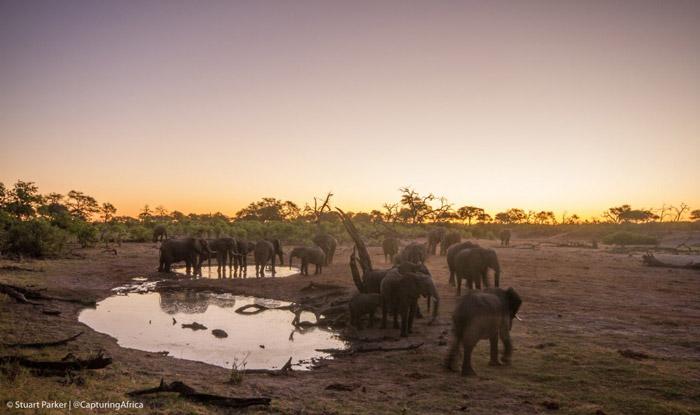 Stuart_Parker-savute-safari-lodge-botswana-sunset