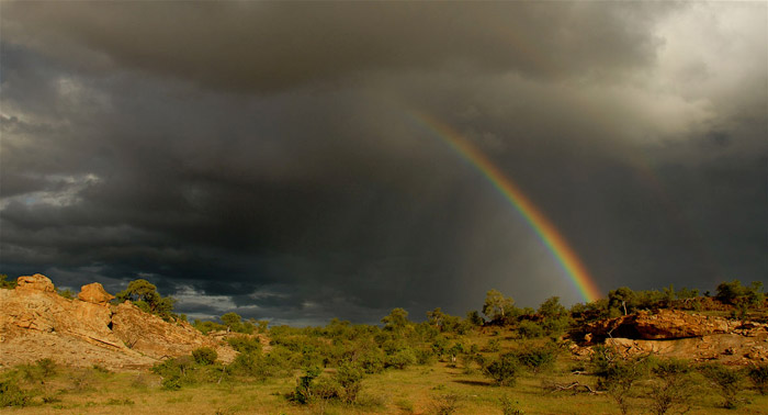 Tuli-Safari-Lodge-landscape-&-rainbow