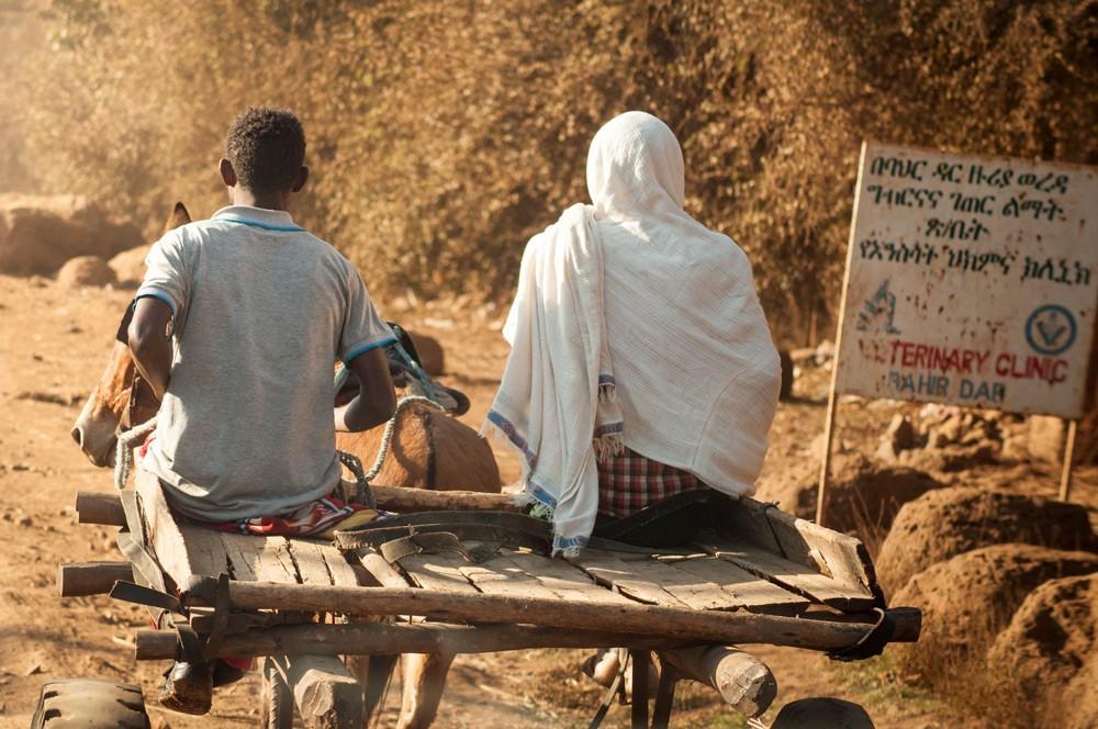 Getting around in Bahir Dar ©Luca Zanon