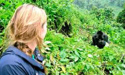 rwanda-gorilla